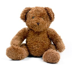 Teddy Bear - Snuggle Buggle